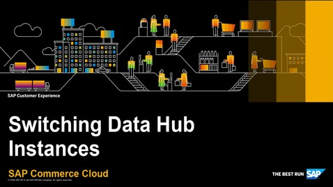 Thumbnail for entry Switching Data Hub Instances  - SAP Commerce Cloud