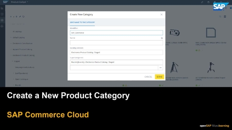 Thumbnail for entry Create a Product Category - SAP Commerce Cloud
