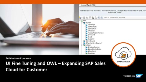 Thumbnail for entry UI Fine tuning and OWL - Extending SAP Cloud for Customer