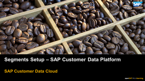 Thumbnail for entry Segments Setup - SAP Customer Data Platform