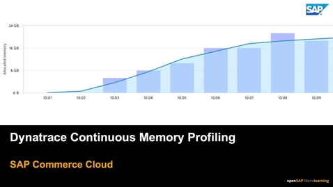 Thumbnail for entry Dynatrace Continuous Memory Profiling - SAP Commerce Cloud