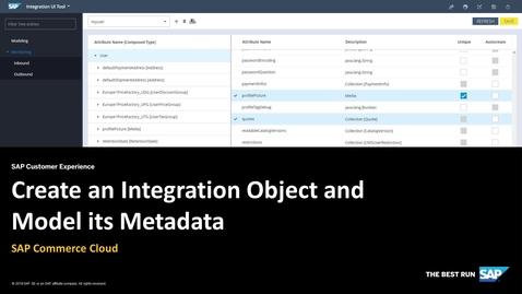 Thumbnail for entry Create an Integration Object and Model its Metadata - SAP Commerce Cloud