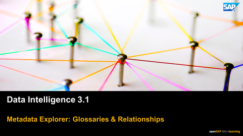 Thumbnail for entry Glossaries & Relationships  - SAP Data Intelligence