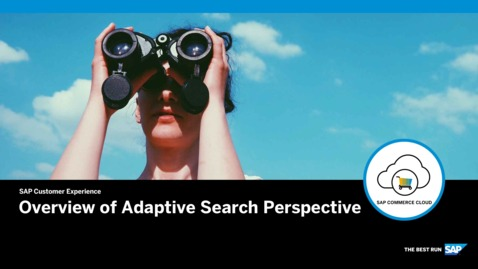 Overview of Adaptive Search Perspective - SAP Commerce Cloud