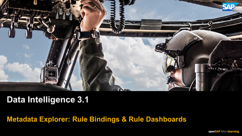 Thumbnail for entry Data Quality Rule Dashboards - SAP Data Intelligence