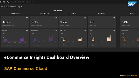 Thumbnail for entry E-Commerce Insights Dashboard Overview - SAP Commerce Cloud