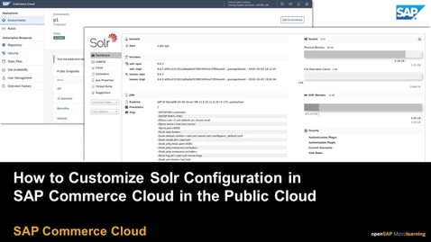 Thumbnail for entry Customizing Solr Configuration - SAP Commerce Cloud