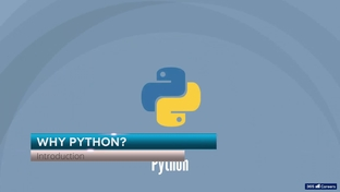Why Python? - Python for Finance: Investment Fundamentals