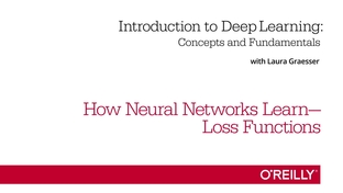 How Neural Networks Learn—Loss Functions - Introduction to Deep