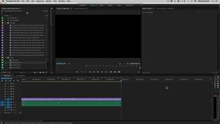Effect Controls - Adobe Premiere Pro CC: Learn Video Editing in