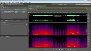 Changing the Pitch & Timing - Total Training for Adobe Soundbooth