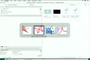 Adding Sound Files to an InDesign Document - Adobe InDesign