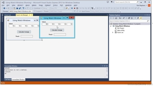 Using Watch Windows - Learning Visual Basic  NET [Video]