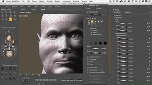 Morph Tool Manipulation - Learning Poser 10 / Poser Pro 2014
