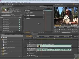 Audio Presets - Adobe Premiere Pro CS5 [Video]
