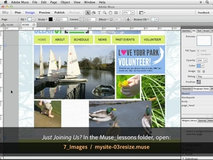 Crop, rotate, resize, and fitting images - 'Adobe Muse