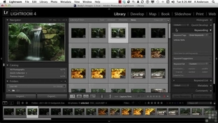 Applying Keywords To Multiple Images - Adobe Photoshop Lightroom 4