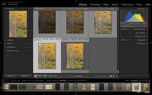 Stacking Photos - Adobe Photoshop Lightroom CC (2015 release