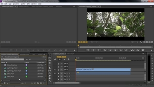 Importing Or Adding Closed Captions To Projects - Adobe