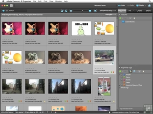 Adding Captions To Images - Adobe Photoshop Elements 9 for