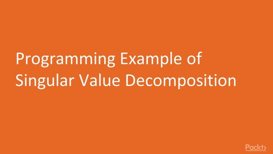 Programming Example of Singular Value Decomposition - Natural ...