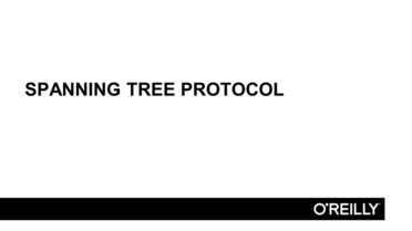Spanning Tree Protocol Design And Build A Small Office Network Video