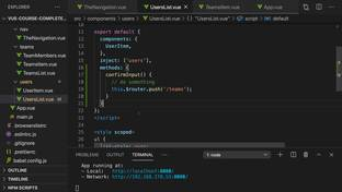 Creating a Global Mixin (Special Case!) - Vue JS 2 - The Complete