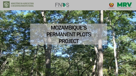 Thumbnail for entry 4.Mozambique Permanent Plots Project
