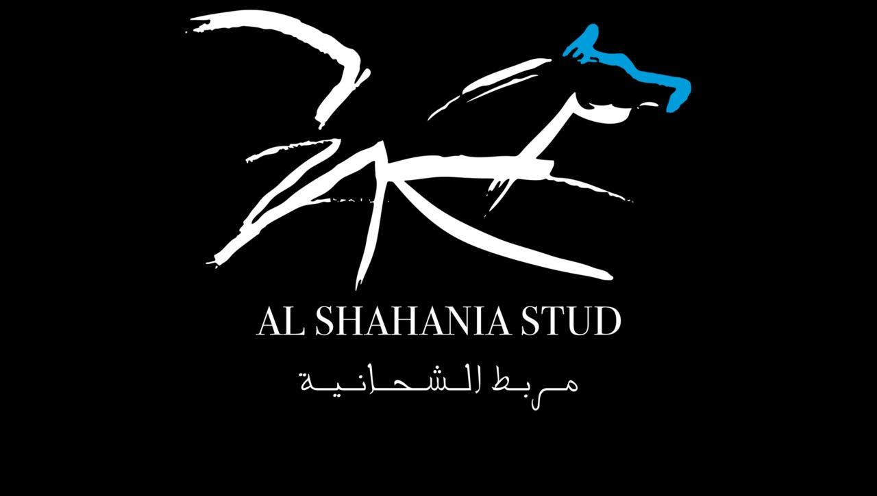 LIVE - Al Shahania Wendell Arena