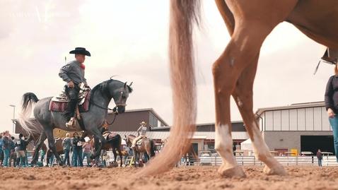 Scottsdale Arabian Horse Show Day 2 Highlights