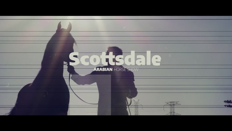 Thumbnail for entry Scottsdale Sets a Stage for the Arabian Horse