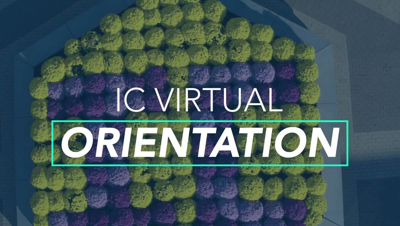 Virtual Orientation: Zoom Guide