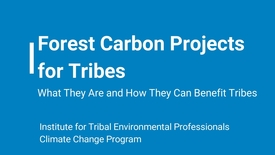 Thumbnail for entry Forest Carbon Projects for Tribes – What They Are and How They Can Benefit Tribes
