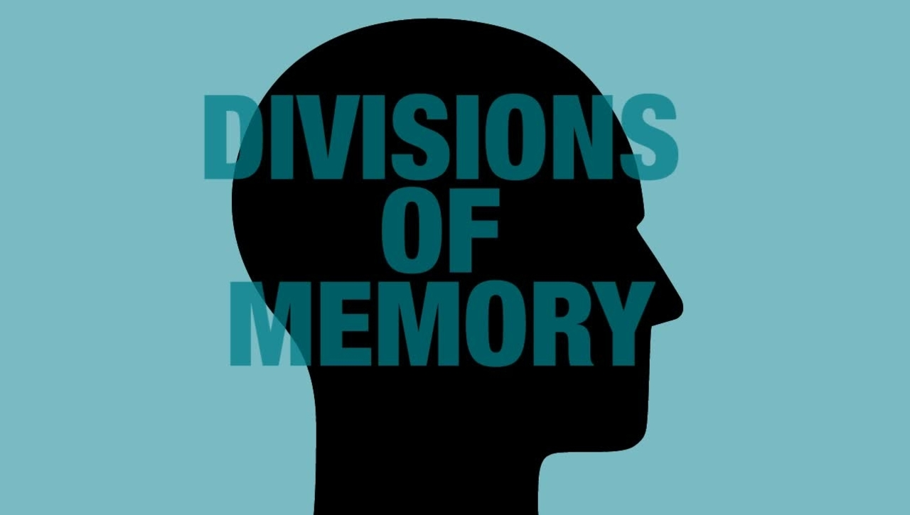 UC 199 Part 1: Divisions of Memory