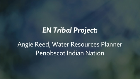 Thumbnail for entry EN Tribal Project: Angie Reed, PIN