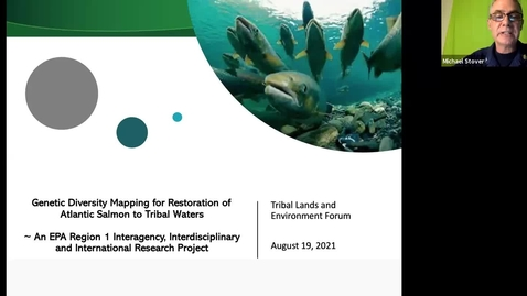 Thumbnail for entry Genetic Diversity Mapping for Restoration of Atlantic Salmon to Tribal Waters