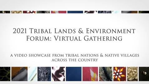 Thumbnail for entry 2021 TLEF:VG Cultural Presentation
