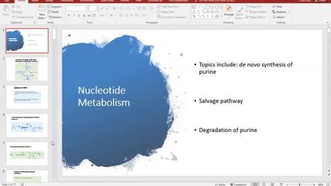 Nucleotide Metabolism-3 (2018)