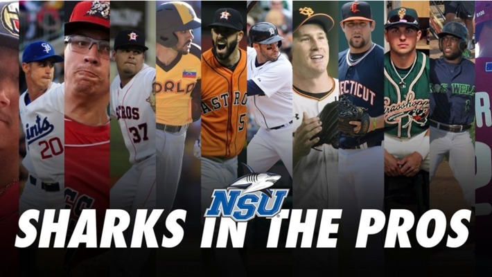 Sharks in the Pros