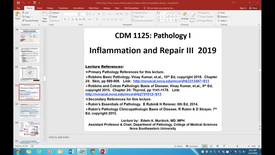 Thumbnail for entry Inflammation & Repair III