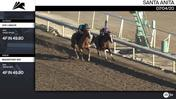 Vive L'Amour (Outside) and Magnificent Red Worked 4 Furlongs in 49.80 at Santa Anita Park on July 4th, 2020