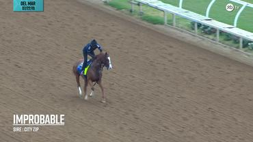 Improbable galloped at Del Mar on July 22nd, 2019