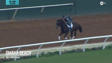 Omaha Beach galloped at Del Mar on July 22nd, 2019