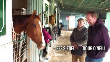 Doug O'Neill Shedrow Stroll: Getting to Know Shut It Up