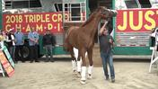 Triple Crown Champion Justify Arrives Back Home to Santa Anita Park