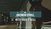 Doug O'Neill Shedrow Stroll: Getting to Know Parsimony and Pavel