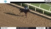 Vodka Twist Worked 4 Furlongs in 48.00 at Del Mar on August 15th, 2020