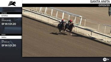 Octopus (Outside) and Tripoli Worked 5 Furlongs in 1:01.20 at Santa Anita Park on July 3rd, 2020