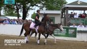Positive Spirit Heads Out to the Track at Churchill Downs on April 30th, 2019