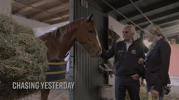 Bob Baffert Shedrow Stroll: Get to Know Chasing Yesterday